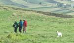 Women walk in a field outside  Guamote