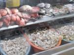 Fish and shrimp at the market.